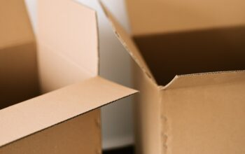 WAYS TO MAKE RELOCATION EASIER